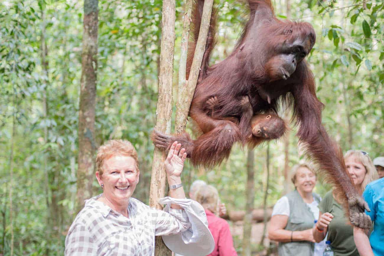 Laura Boorman Orangutan Trekking