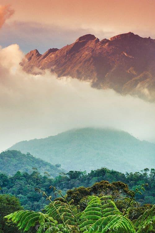 Borneo Mt. Kinabulu