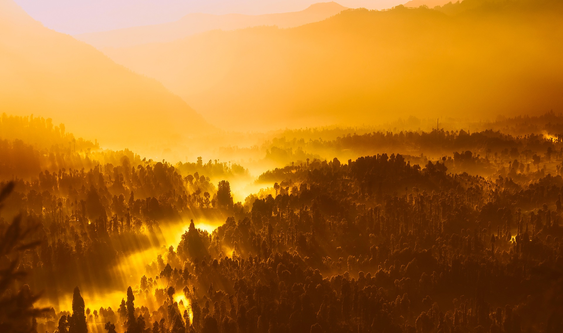 Sunrise and fog over the rainforests of Indonesia